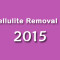 Best cellulite removal products for 2015